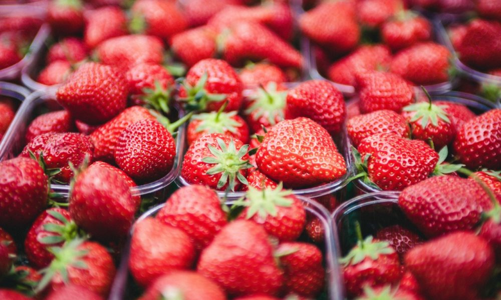 strawberries for transporting